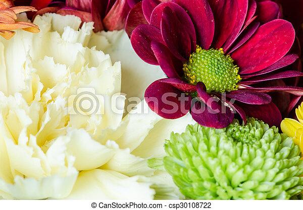 flowers - csp30108722