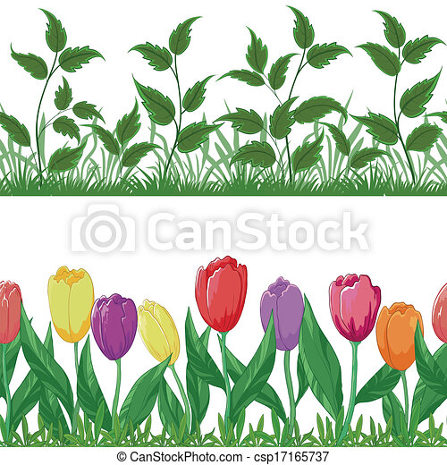 Flowers tulips and grass, set seamless - csp17165737