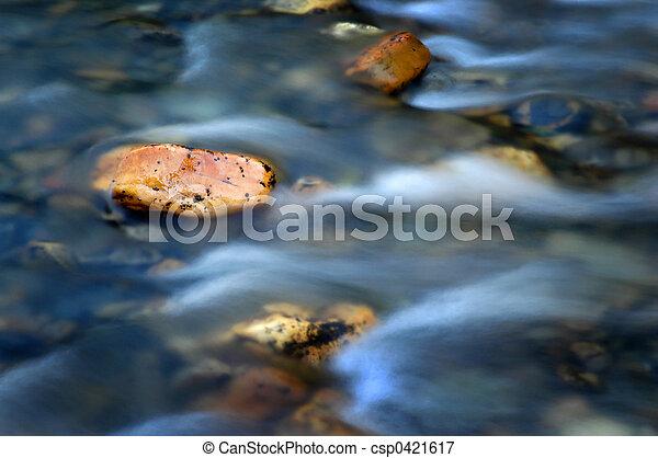 River - csp0421617