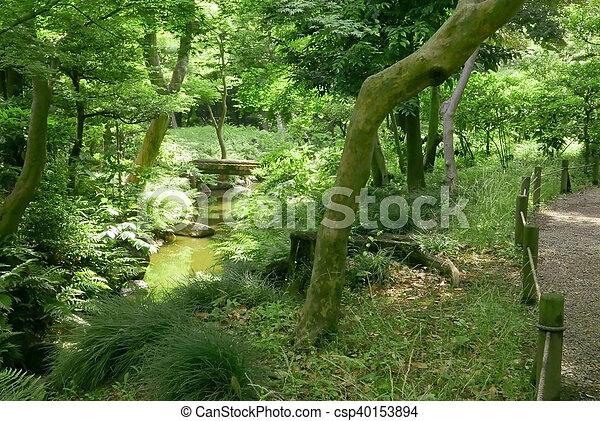 Fluß Brücke Bäume Arbeiten Garten Japaner