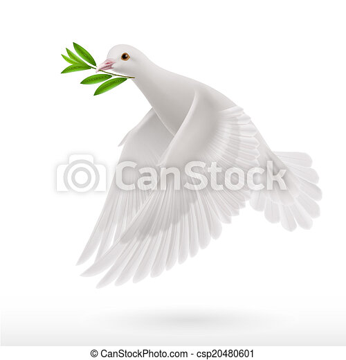 Fly dove - csp20480601