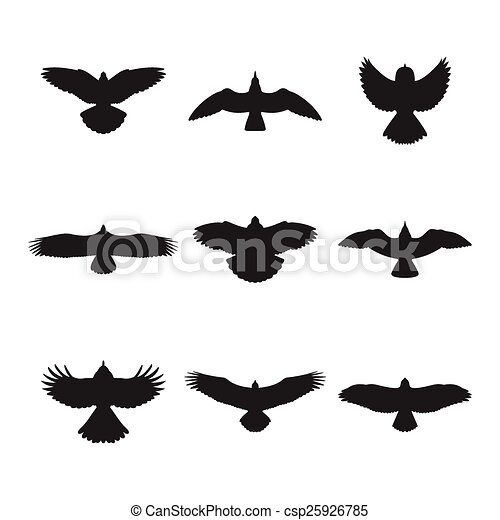 Flying bird silhouettes set - csp25926785