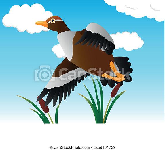 Flying Duck - csp9161739