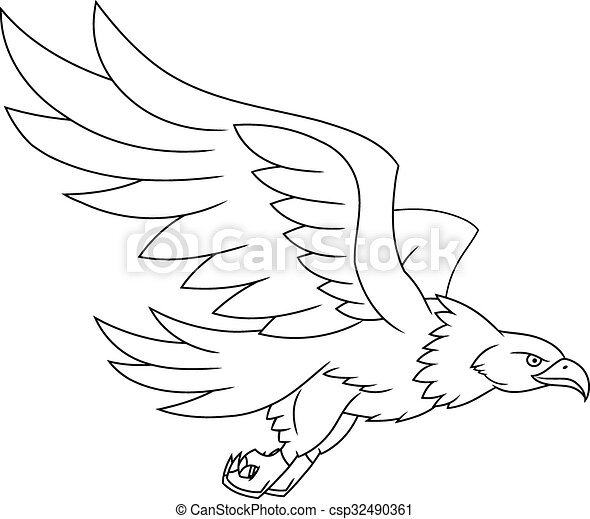 flying eagle illustration illustration of the flying eagle on white