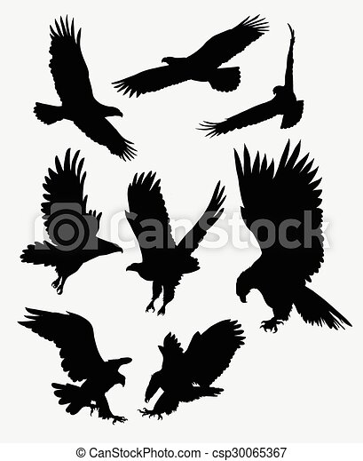Flying eagle silhouettes. Eagle and hawk bird animal ...