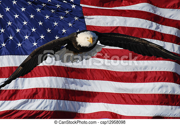 Flying Eagle with flag - csp12958098