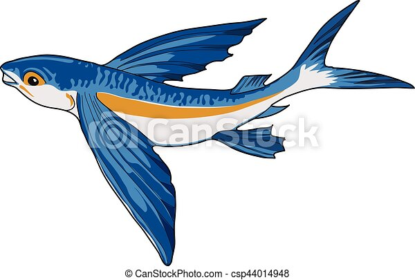 Blue flying fish on a white background for Flying fish drawing