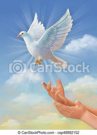 Flying White Dove White Dove Symbol Of Peace Flying Stock