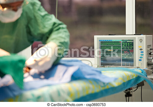 focus on a life monitor for a cat under anesthesia - csp3693753