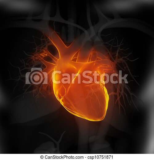Focused on human heart - csp10751871