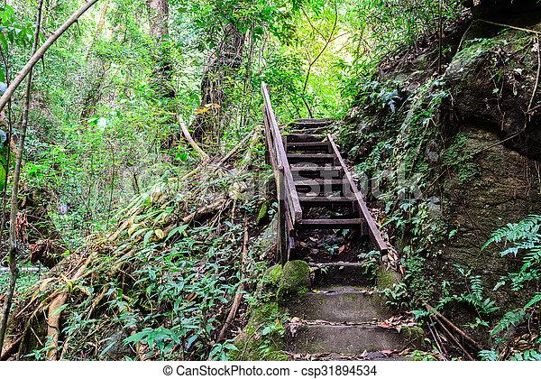 Escalera a la cascada en la fosa profunda. - csp31894534