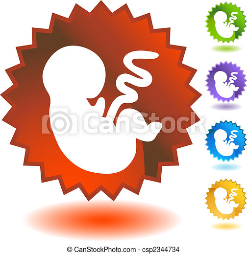 foetus, écusson - csp2344734