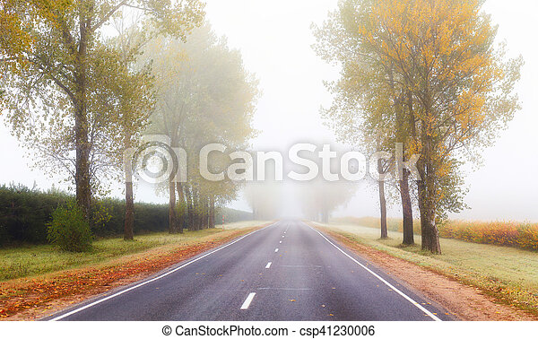 Fog above road in the morning - csp41230006