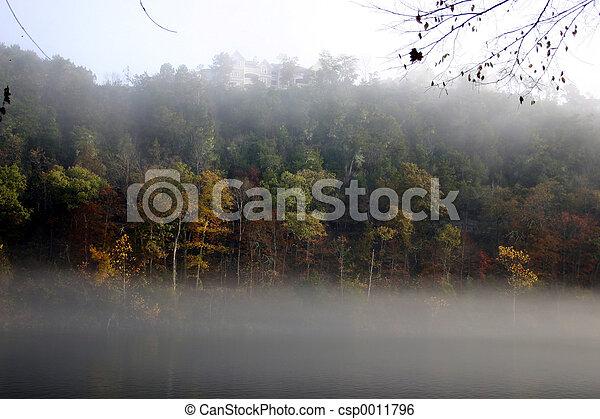 Fog & fall - csp0011796