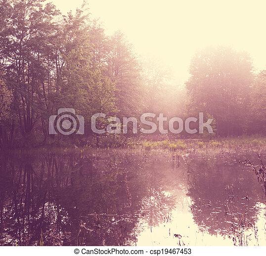 Fog in lake - csp19467453