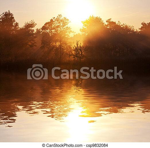 Fog in lake - csp9832084