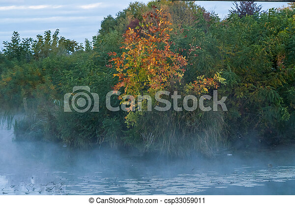 fog on an autumn river with green forest - csp33059011