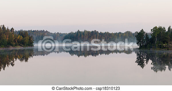 fog on forest lake - csp18310123