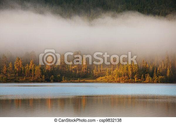 Fog on lake - csp9832138