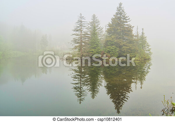 Fog on Spruce Lake in Vermont - csp10812401