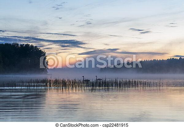 fog over a lake - csp22481915