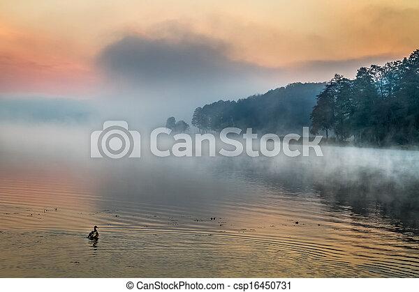 Fog over the lake at sunrise - csp16450731