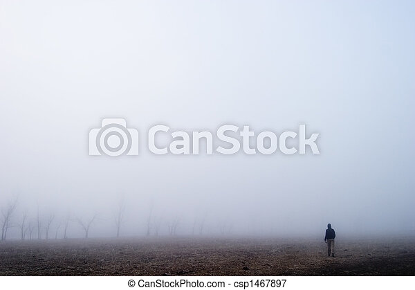Fog Walk - csp1467897