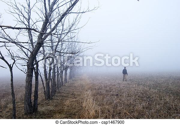 Fog Walk - csp1467900