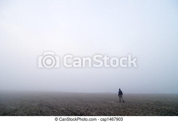 Fog Walk - csp1467903