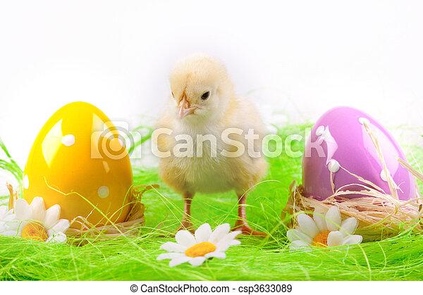 fogalom, húsvét - csp3633089