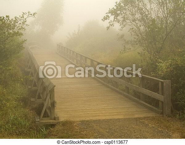 Foggy Bridge - csp0113677