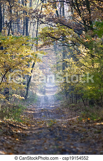 Foggy dirt road at fall - csp19154552
