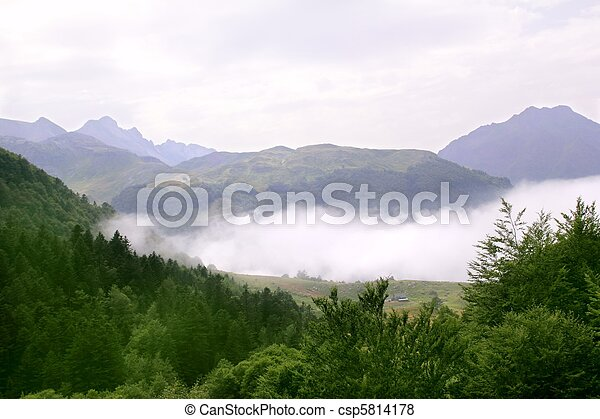 foggy mountains forest fog scenics nature - csp5814178
