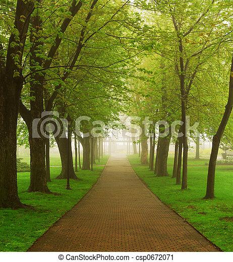 Foggy park - csp0672071