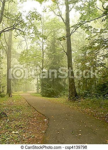 Foggy Park - csp4139798
