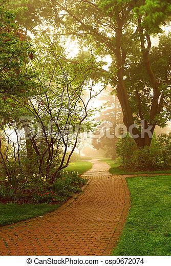 Foggy park - csp0672074