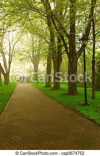 Foggy park - csp0674752