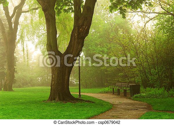 Foggy park - csp0679042