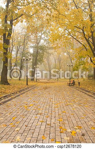foggy park - csp12678120