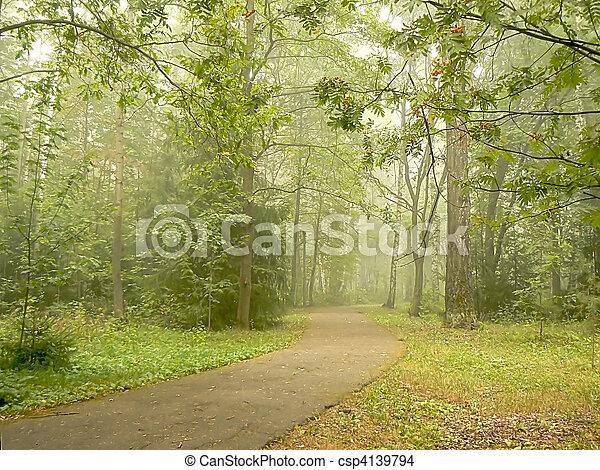 Foggy Park - csp4139794