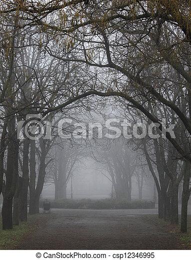 foggy park - csp12346995