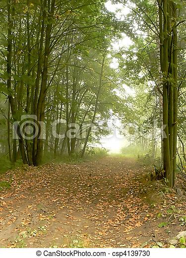 Foggy Park - csp4139730