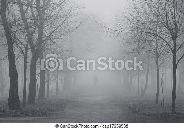 foggy park - csp17359538