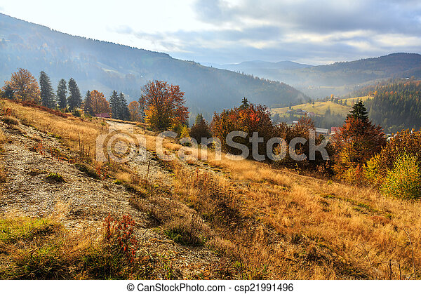 Foggy summer morning in the mountains - csp21991496