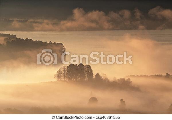 Foggy summer morning on lake - csp40361555