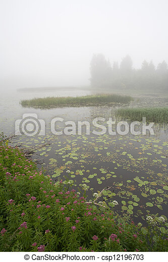 Foggy summer morning - csp12196703