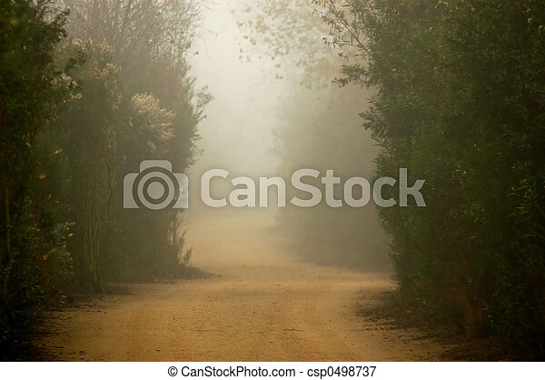 Foggy Trail - csp0498737