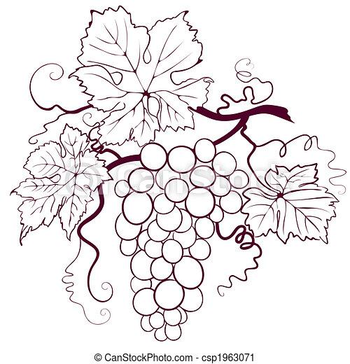 foglie, uva - csp1963071