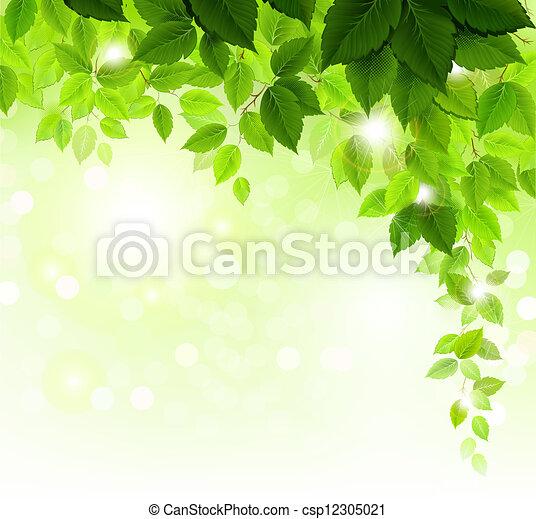foglie, verde - csp12305021