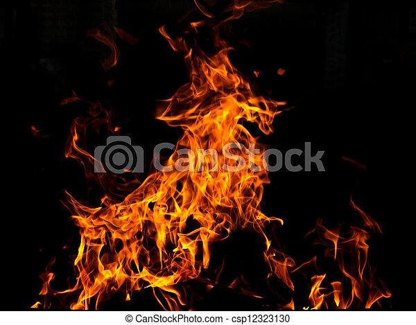 fogo, cabra - csp12323130